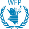 Government Partnerships Officer, Consultant at United Nations World Food Programme