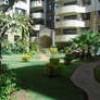 a charming 3 bedrooms apartment with DSQ for rent in lavington