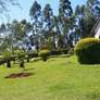 4BR Bungalow Master ensuite with a DSQ on 5acres in Kiminini - Kitale