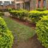 To let 3bdrm at lavington Nairobi Kenya